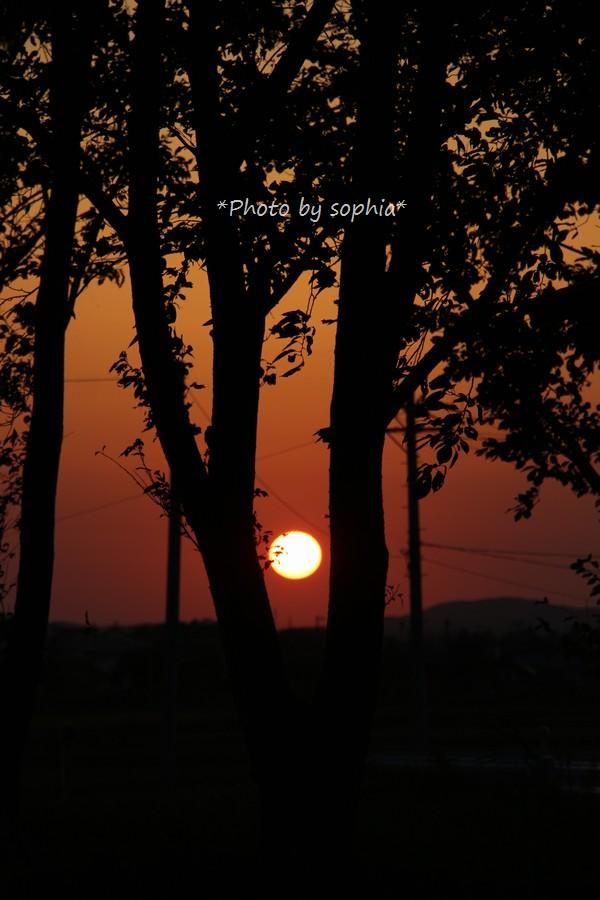 2014年10月11日夕陽