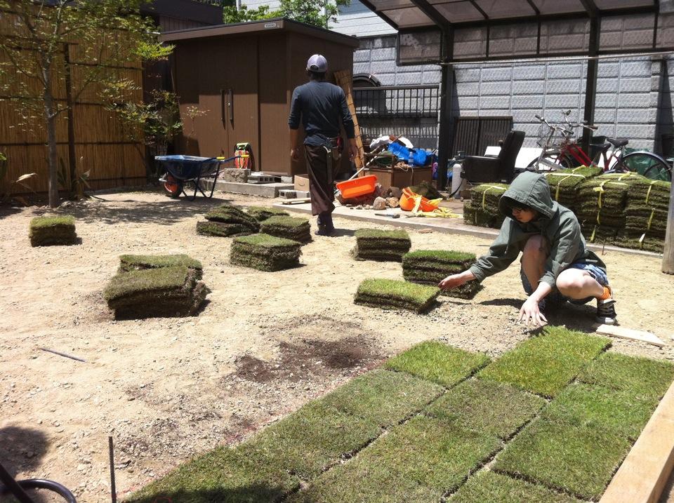 芝生貼り作業風景