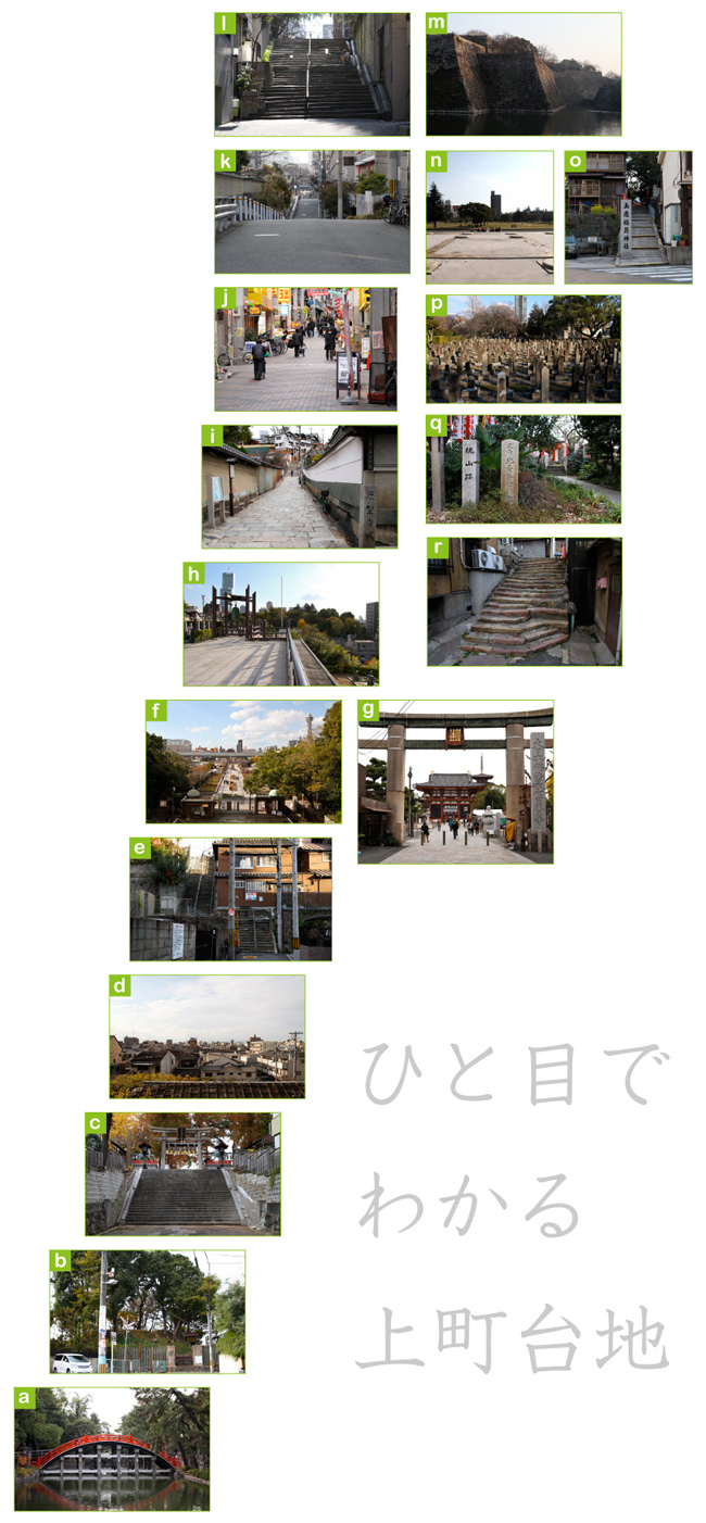 daichi_point_04.jpg