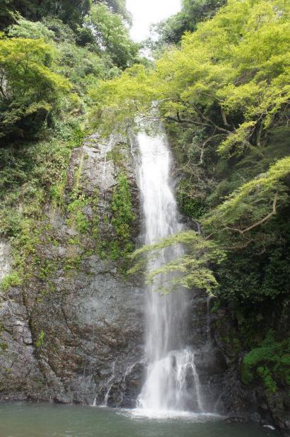 箕面の滝 9月