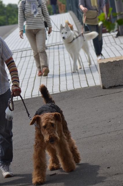 2013.7月お散歩会5