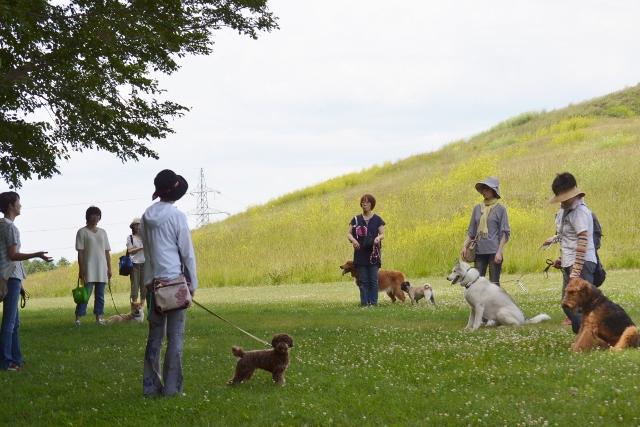 2013.7月お散歩会8