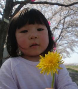 CIMG7121_20120508012319.jpg