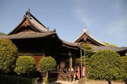 320 足利 鑁阿寺 本堂と不動尊