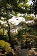 351 足利 足利 織姫神社