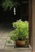 112 鎌倉宮
