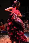 0491 Museo del Baile Flamenco