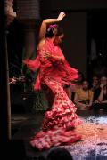 0484 Museo del Baile Flamenco