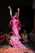 0487 Museo del Baile Flamenco