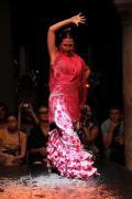0471 Museo del Baile Flamenco