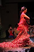 0469 Museo del Baile Flamenco