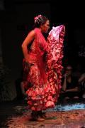 0495 Museo del Baile Flamenco