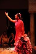 0557 Museo del Baile Flamenco