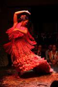 0546 Museo del Baile Flamenco