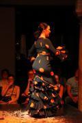 0628 Museo del Baile Flamenco