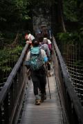 108 尾白川渓谷 吊り橋