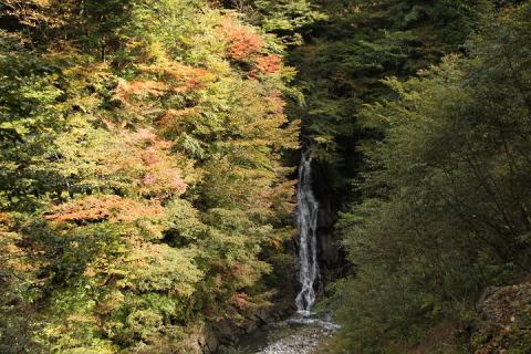 025 西沢渓谷 大久保の滝