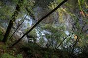 039 西沢渓谷 恋糸の滝