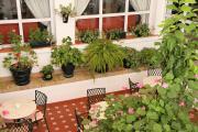 1681 Hotel Los Olivos