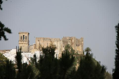 1685 Castillo