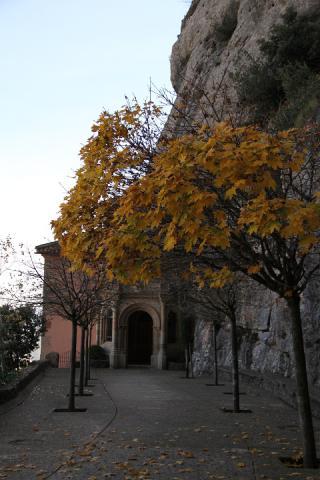 04 Santa Cova