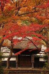 016 円覚寺