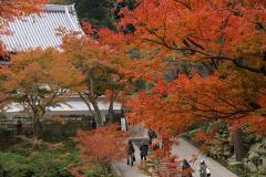 022 円覚寺