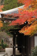 051 円覚寺