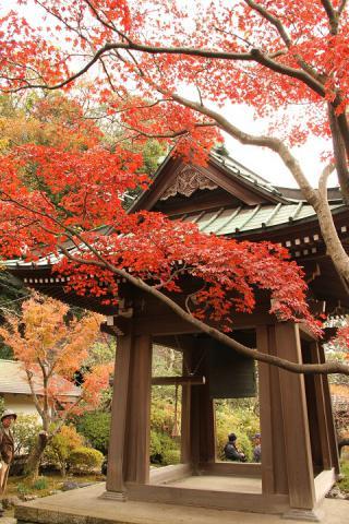 084 海蔵寺