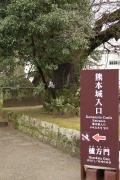 030 熊本城