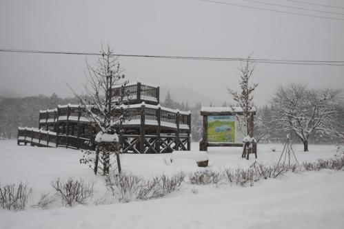 美女高原撮影場所