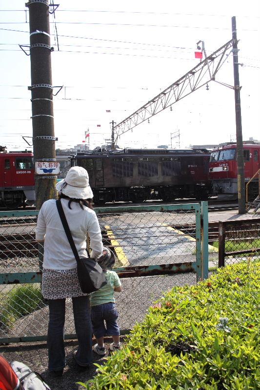 DPP6550.jpg