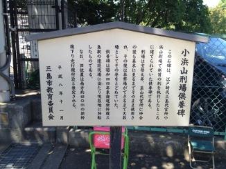 20120824-1-2.jpg