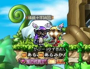 Maple130210_044832.jpg