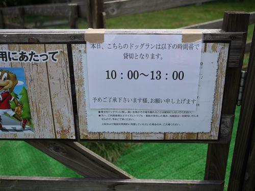 P1120943.jpg