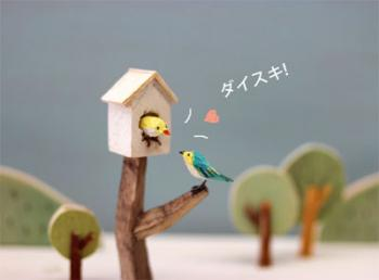 bird2_20130214142455.jpg