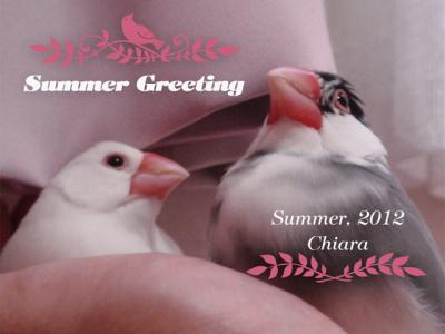 とりこ:Summer Greeting2012