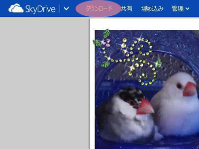 画面:SkyDriveその2