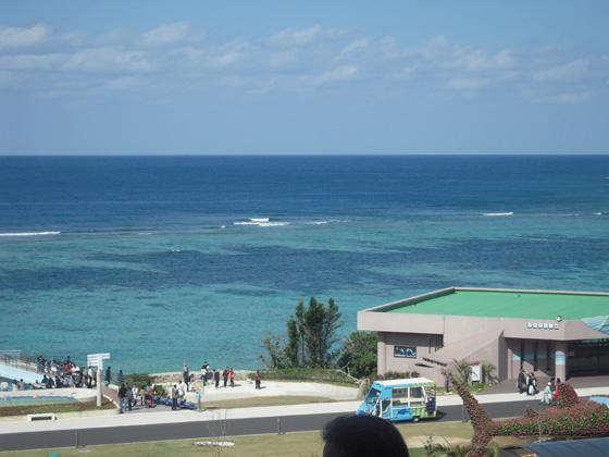 美ら海水族館から見える海