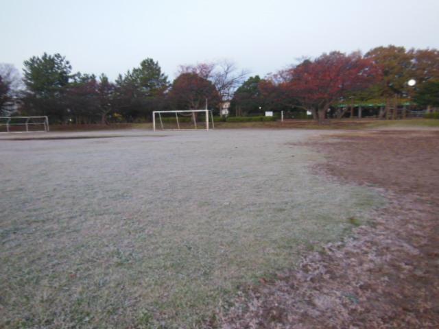 初霜 004