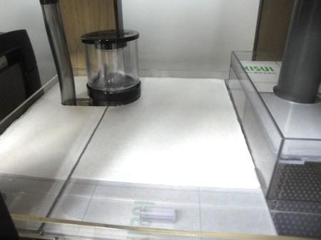 DSC09060.jpg