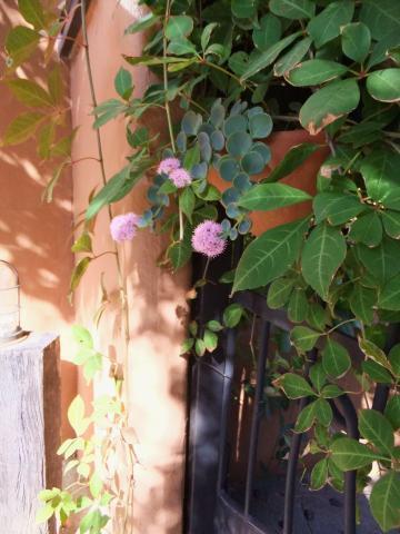 008_convert_20121024194242.jpg