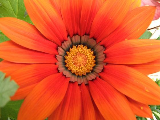 032_convert_20120507190837.jpg