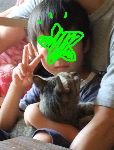 猫&息子1