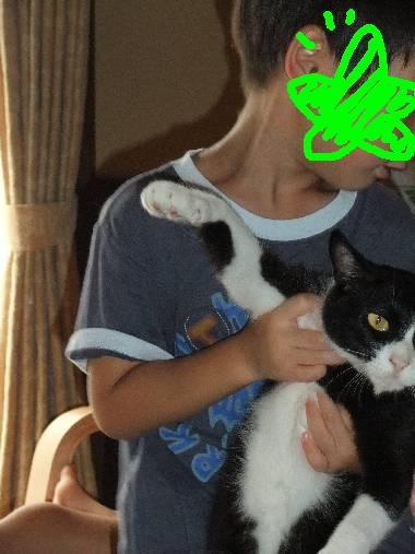 猫&息子3