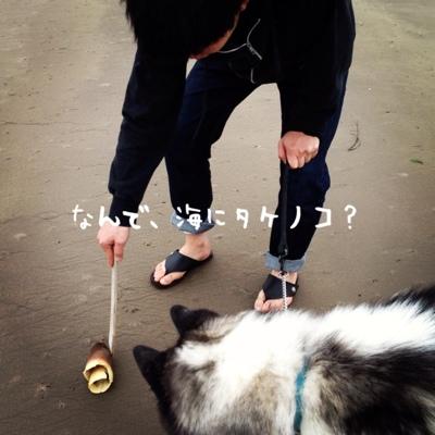 fc2blog_2013040609521630e.jpg