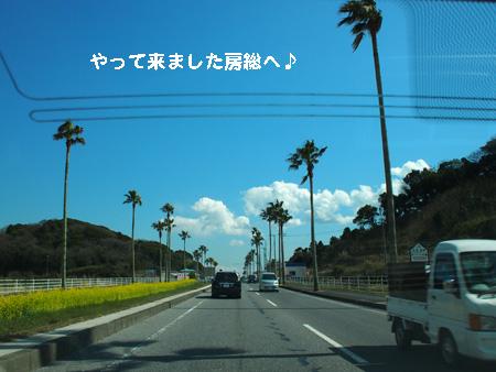ブログ村プロフィール写真2