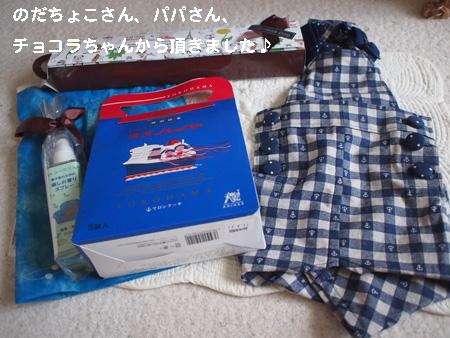 P7081920.jpg