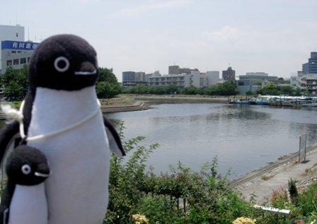 勝島運河1