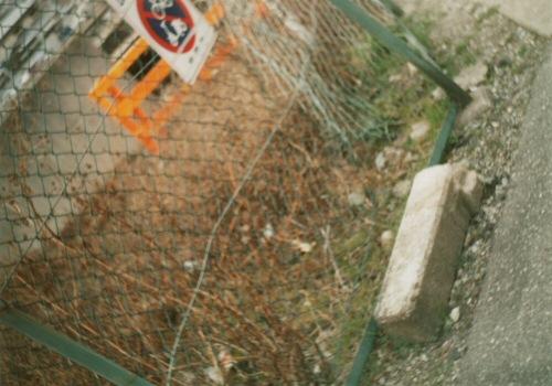 20060330b.jpg